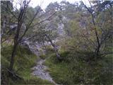 Rokovnjaška planinska pot...to pa je nekaj čisto izven konteksta današnje poti...