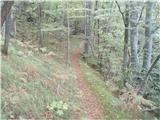 Rokovnjaška planinska pot...Gozdna pot...