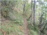 Rokovnjaška planinska pot...uf kaka singlca za gorsko kolo ampak škoda bi je bilo in naj še nadalje služi le pohodniško-planinskemu klenemu koraku...