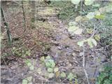Rokovnjaška planinska pot...ta svet je izredno bogat z vodo- praktično povsod nekaj ,,kaplja in curlja,,...