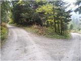 Rokovnjaška planinska pot,,,tukaj levo...