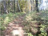 Rokovnjaška planinska pot...na gozdni poti proti Limbarski gori...