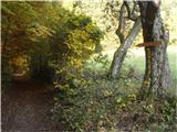 Rokovnjaška planinska pot...med Limbarsko goro in Golčajem sem srečal pet , šest sprehajalcev...