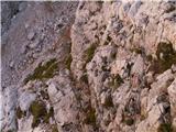 Prečenje Via de la Vita - Vevnica - Strug - PoncePogled nazaj