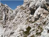 Prečenje Via de la Vita - Vevnica - Strug - PonceProti vrhu