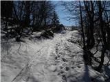 Gozdarska koča Rovtarica - altemaver_ratitovec