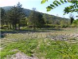 Rižana-labirint