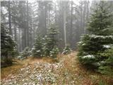 Završnica (Pri žagi) - tomceva_koca_na_poljski_planini