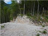 Bašelj - planina_kalisce