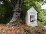 Dom pod Reško planino - Javor
