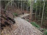 Begunje (Krpin) - Smokuški vrh
