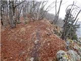 Bohinjska Češnjica - rudnica