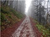 Završnica (Pri žagi) - smokuski_vrh