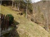 Reka (Laze) - crvov_vrh