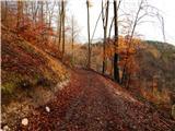 bled_velika_zaka - Belska planina