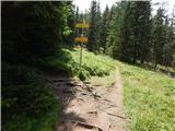 Klippitztörl - forstalpe_svinska_planina___saualpe