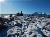 Planina Spodnji Kozjek - Jerebikovec