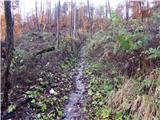 Bled (Velika Zaka) - hotunjski_vrh