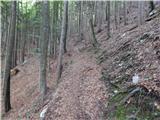 mojstrana - Mali vrh (na Mežakli)