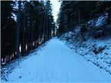 bistrica_v_rozu___feistritz_im_rosental - Singerberg / Žingarica