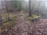 Završnica (Pri žagi) - tolsti_vrh_pri_poljski_planini