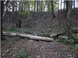 Podbrdo - slatnik_jugovzhodni_vrh