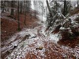 Begunje (Krpin) - smokuski_vrh