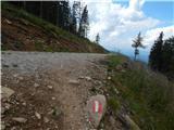 Klippitztörl - velika_svinja___ladinger_spitze_svinska_planina___saualpe