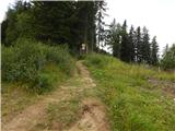 Klippitztörl - Ladinger Spitze (Saualpe)