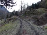 Grahovo ob Bači (Brelih) - bukovski_vrh