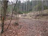 Podpeca (Helenski potok) - Koča na Pikovem