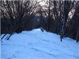 Kojca (1303m)zadnji del, spihano, trd sneg