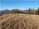 Bukovski vrh