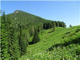 Goli vrh  1787 mnmvrh ob prihodu na Jenkovo planino