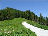 Goli vrh  1787 mnmz avstrijske strani pride cesta na planino