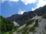 Veliki vrh (Košuta)2019.07.10.195 melišča in skalovje